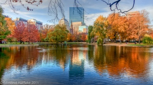 Boston Public Garden (copyright Ed Hatfield)