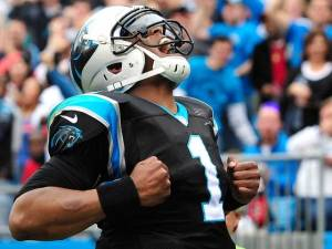 Cam Newton and the Panthers need one win to eliminate the Packers from the 5 seed